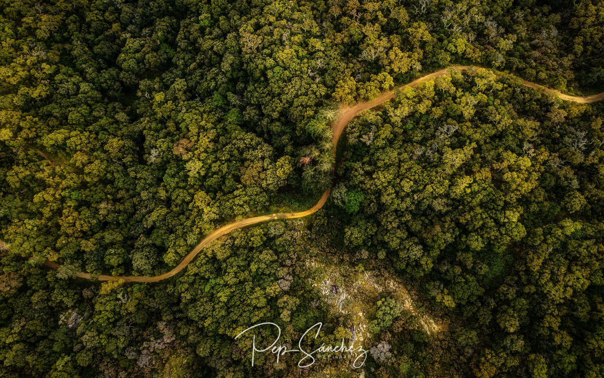 Road to Montsoriu