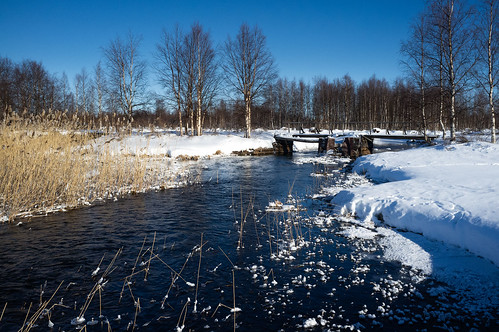 Start of a river | by Winterbound