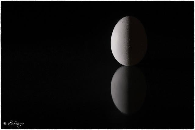 Side Lit Egg On Black Background