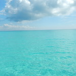 Coral reef Yaeyama Islands okinawa Japan