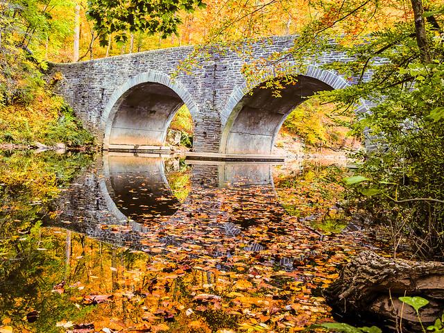 Wissahickon Park Bridge by Louis Dallara