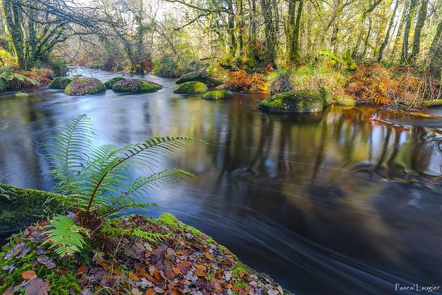 The magical world of Ellez river