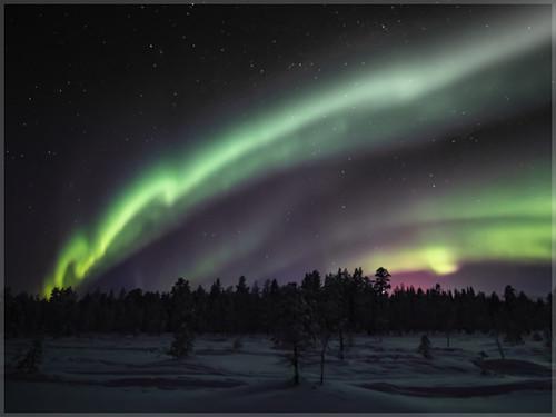 Aurora borealis_93025 | by uwe_cani