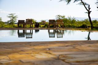 Africa Safari Lake Manyara pool | by Paradise & Wilderness