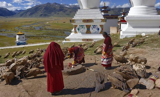 Sky burial, Tibet 2018