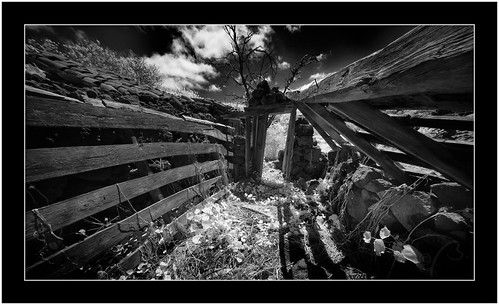 Abandoned, Puntagorda. Isle of La Palma | by Bartonio