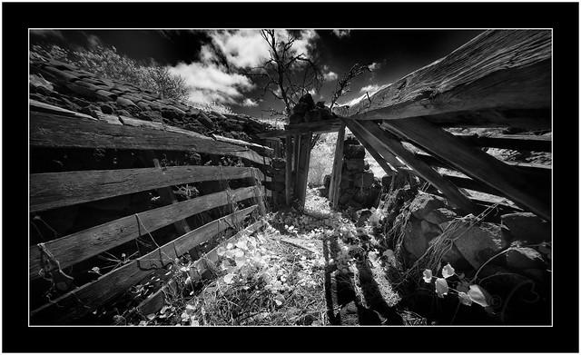 Abandoned, Puntagorda. Isle of La Palma