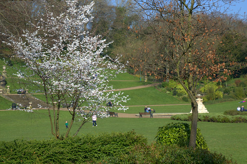Spring at Miller Park, Preston   by Tony Worrall