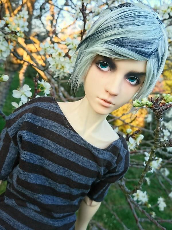 [Migidoll Ryu] Nouveau look!  46847909354_e820e856d9_c