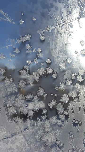 eastern frost