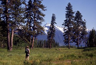Hiker in North Cascades, 1972 | by Seattle Municipal Archives