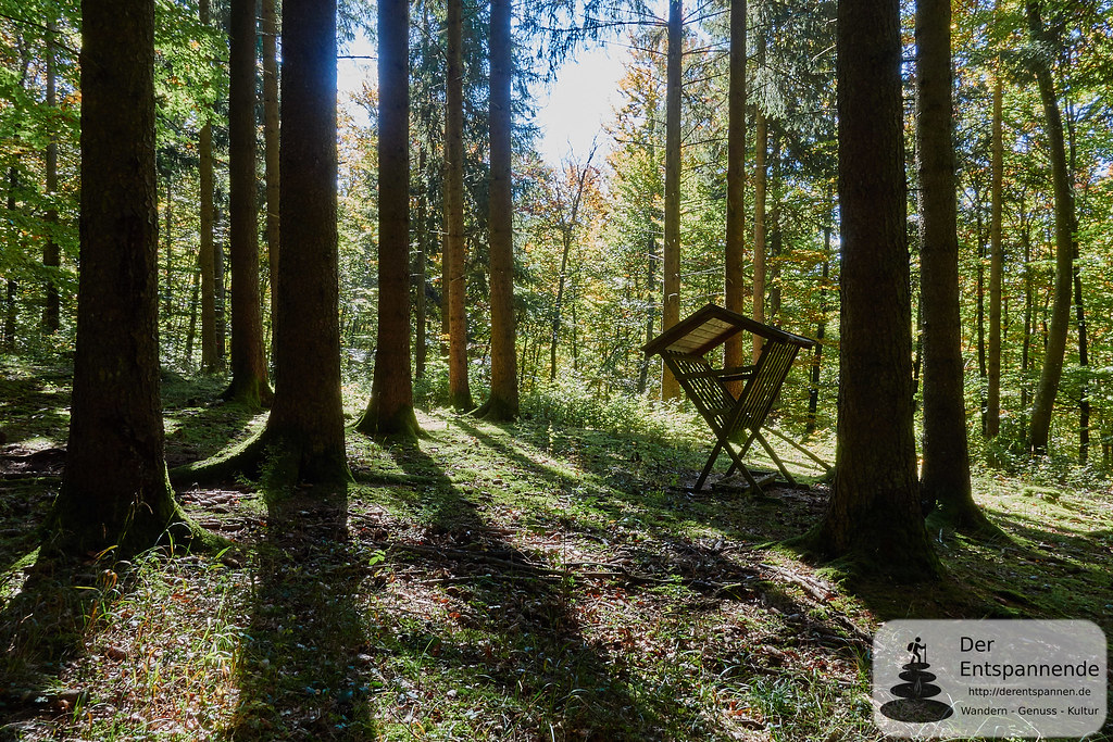 Im Wald überm Donautal