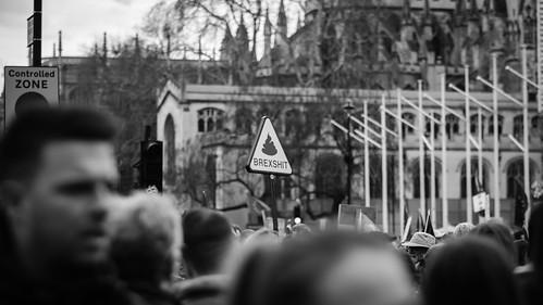 Banner On The March: Brexshit   by Stuart Herbert