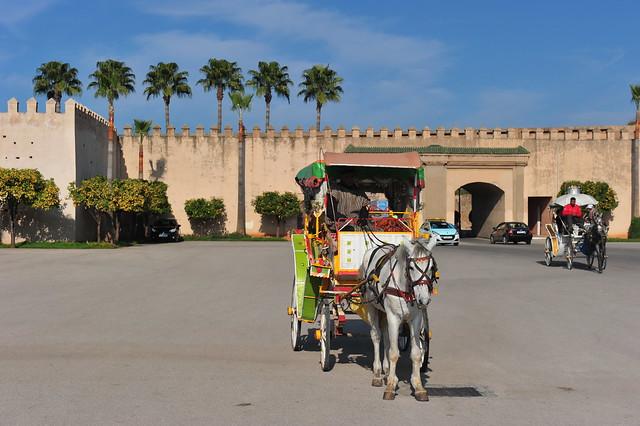 Meknès, Morocco, January 2019 D700 031