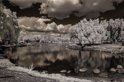 lindolake lakeside infrared infraredphotography ir clouds birds water nature convertedinfraredcamera sky highcontrast polarizer stones rocks