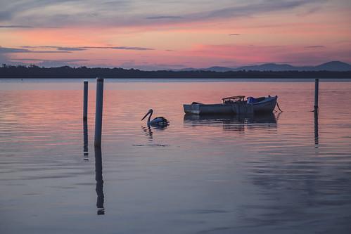 australia au newsouthwales nsw greatlakes greatlakesnsw greenpoint lake wallislake boat fishingboat pelican thelakesway sunset canoneos6d canonef24105mmf4lisusm