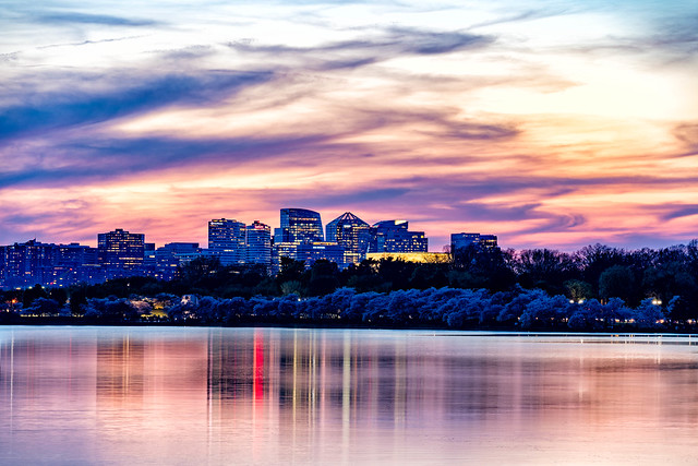 After a week of lovely temperatures, the DC Cherry Blossoms hit a sustained peak bloom. Sunset and the Arlington skyline are in the background. #DCCherryBlossoms #washingtondc #cherryblossoms #cherryblossomsdc #dcblooms #tidalbasin #washingtondc #district