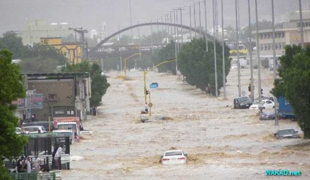 3883 Why Princes and Ministers are arrested in Jeddah Flood Case 2009 02