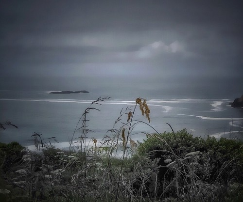 somber moody westcoast pacific ocean gray