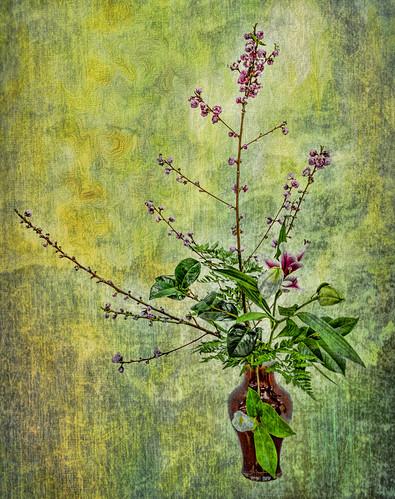 Ikebana Still Life #5   by FotoGrazio