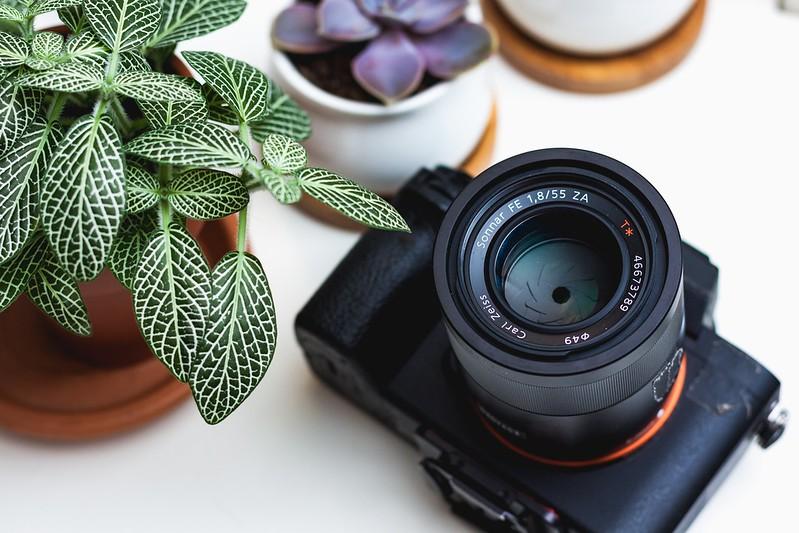 Best Vlogging Camera with Flip-Screen