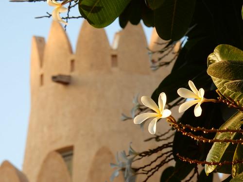 Al Ain Palace museum - 4