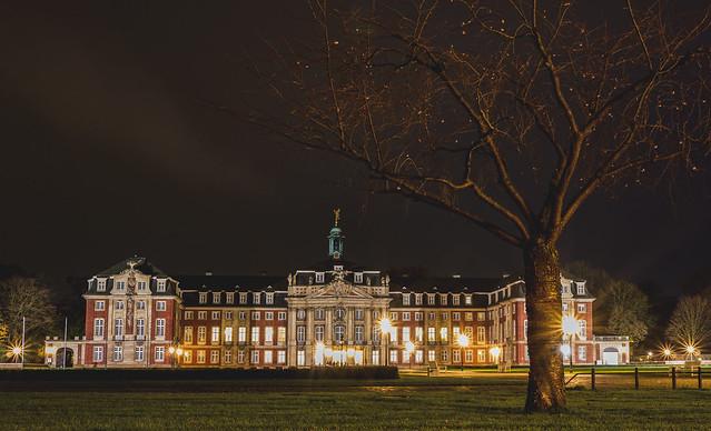Münster Castle at Night