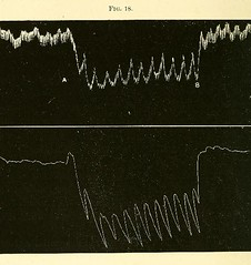This image is taken from Page 90 of The physiology and pathology of the cerebral circulation; an experimental research