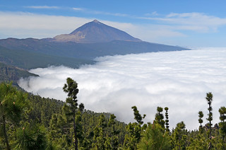 Mar de Nubes, Tenerife | by BuzzTrips