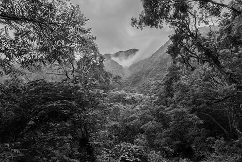 TAIWAN Taroko National Park -137.jpg | by geigerwe