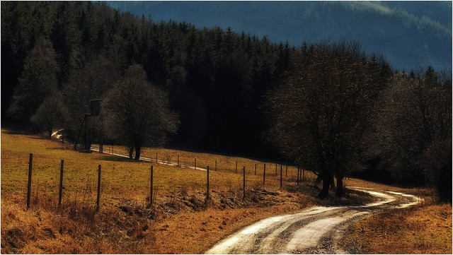 Der verschlungene Weg