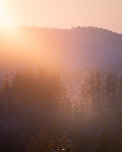 suomi finland jyväskylä kanavuori mountain forest sunset sun light nature landscape telephoto nikon d750 nikkor 200500mm outdoor winter winterwonderland shadow auringonlasku talvi metsä view cold amazing earth