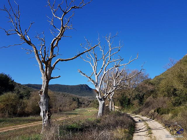 Por los montes de Herrera y el Yermo Camaldulense 1