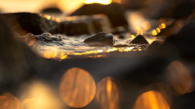 Zen feeling... | SONY ⍺7III & Sigma FE 1.8/135 Art