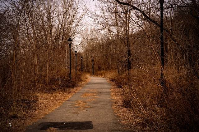 Nature walk...