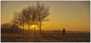 Walking the dogs - DSC08980-bewerkt.jpg | by Fred_St