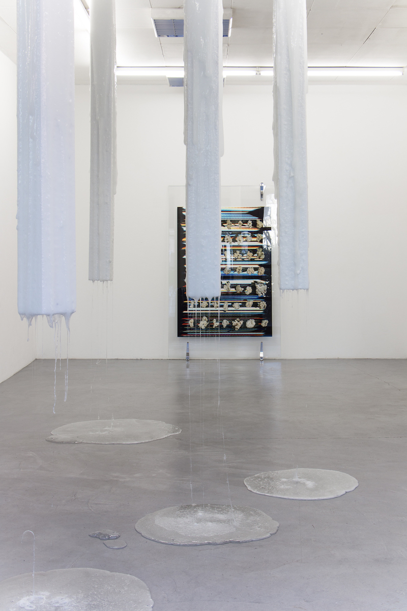 soothing efficacy, installation view, 8.Salon, Hamburg, 2019
