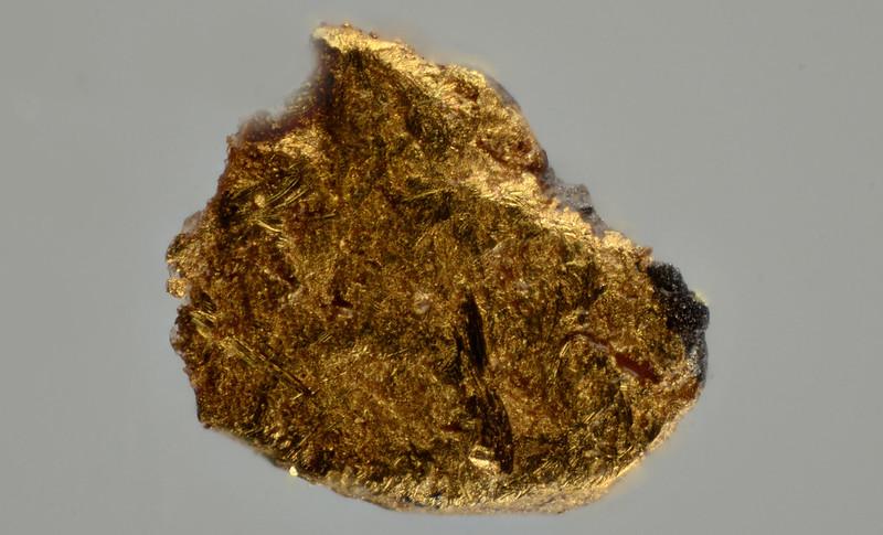 新鉱物を含む砂金
