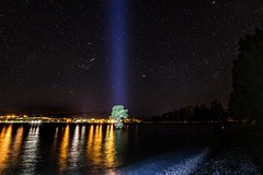 The Wanaka Tree At Night-3
