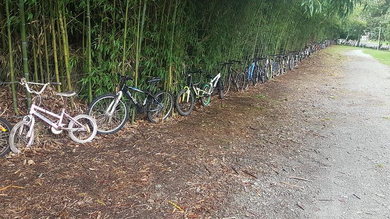 Bike Fence Kaikohe