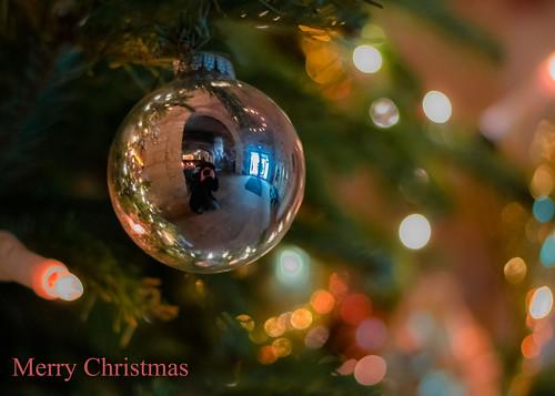 MERRY CHRISTMAS | by marionrosengarten