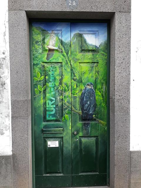 Painted door (2A) (Elisabete Henrique 2015)