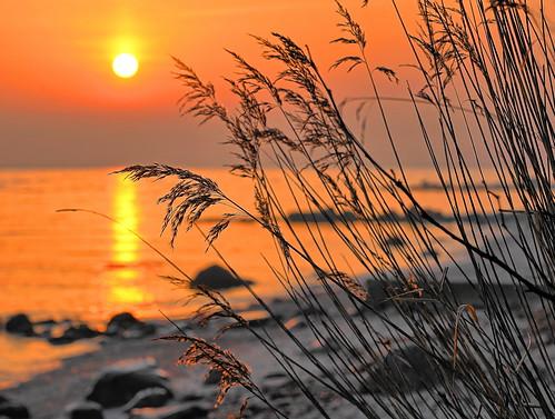 sunrise sonyfe24105mmf4goss fe24105mmf4goss sonyilce7m2 sonya7m2 aarhus moesgaardbeach moesgaard
