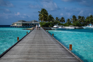 The path to snorkeling | by TimoOK