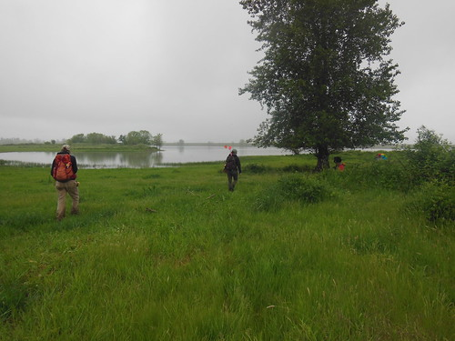 PSU Field Methods class recording sites on Sauvie Island | by Shelbylra