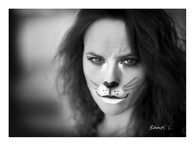 12-52 retrato animal