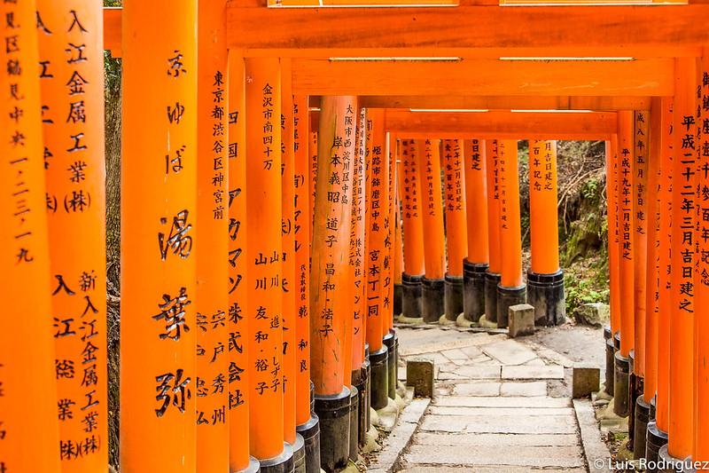 Caminos llenos de torii en Fushimi Inari