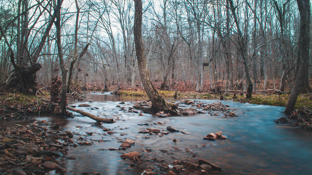 Bringle Creek. Pulaski County. Arkansas.