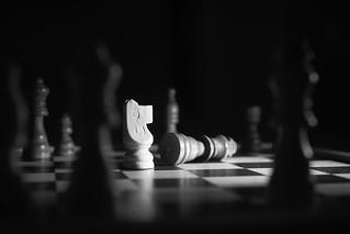 intelligent gespielt | by Lukas Havemann