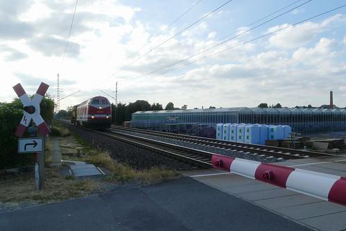 229 147 in Dresden-Stetzsch | by Entenfang1